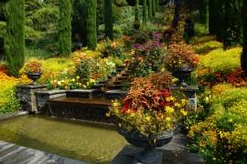 Gartenschau: Träumen erlaubt!
